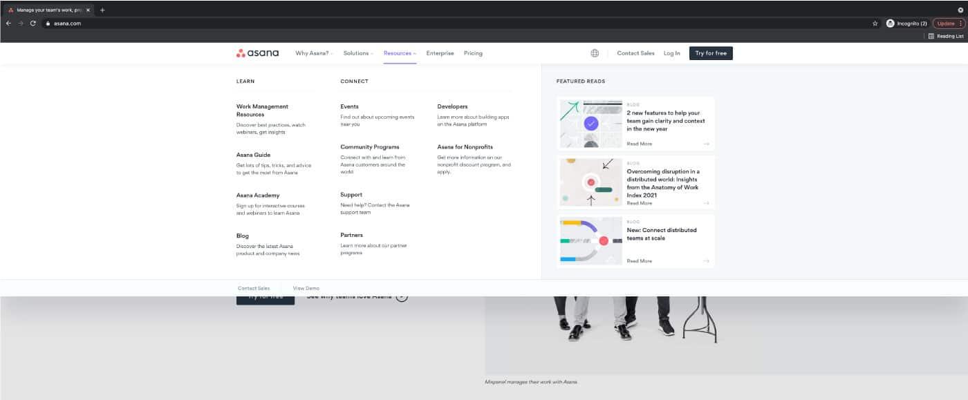 Website Anatomy: Mega menu