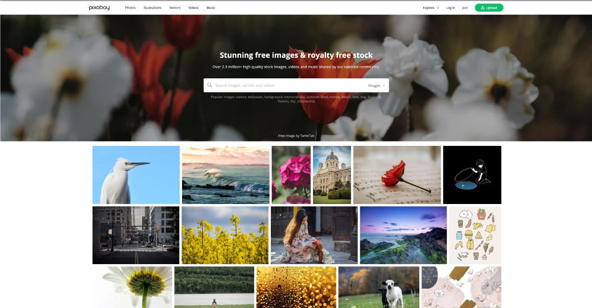 pixabay - website for best free stock photos