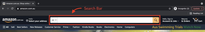Website Anatomy: Search bar